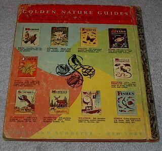 Little Golden Book  Snow White and Seven Dwarfs no.1