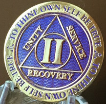 2 Year AA Medallion Purple Gold Plated Alcoholics Anonymous Sobriety Chi... - $17.99
