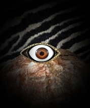 EVIL EYE RING TALISMAN VOODOO MAGICK SEND BACK ANY BLACK MAGICKS TO THE... - $66.00