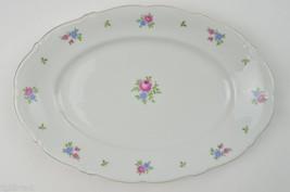 Forest China Rambler Pattern Oval Serving Platter Bavaria Germany Floral... - $25.99