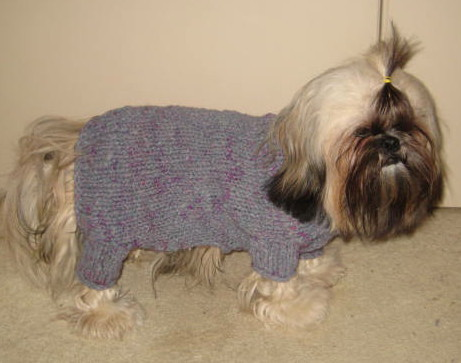 HANDMADE hand knit Dog Sweater for Male Dog - small breed