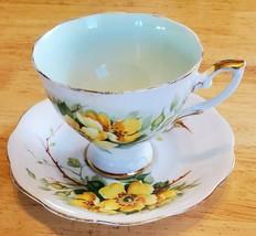 Vintage Royal Standard Cup & Saucer: Wild Rose pattern - $15.67