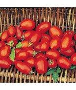 1/8 Oz Seeds of Gabrielle Tomato - $342.54