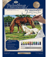 """Paint By Number Kit Artist Canvas Series 11""""X14"""" Horses In Field - $14.35"""