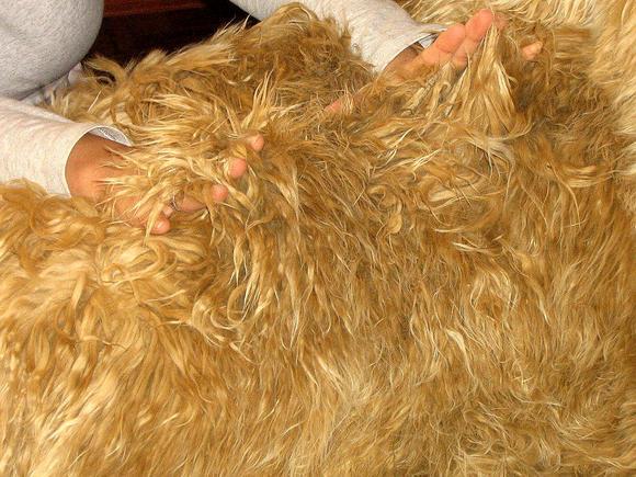 Fur bedspread,Suri Alpaca Fur,pelt Planket,King size