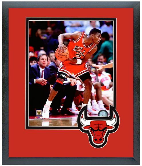 Dennis Hopson 2014 Chicago Bulls - 11 x 14 Team Logo Matted/Framed Photo