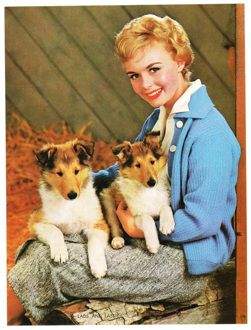 Cp woman with collie pups
