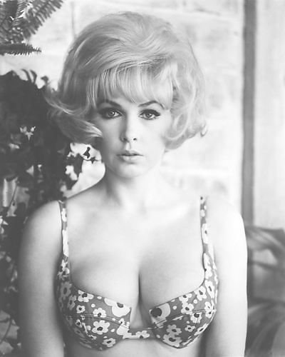 STELLA STEVENS POSTER 24X36 INCHES PLAYBOY PLAYMATE PIN-UP 1960s 61X90 CM