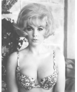 STELLA STEVENS POSTER 24X36 INCHES PLAYBOY PLAYMATE PIN-UP 1960s 61X90 CM - $34.99