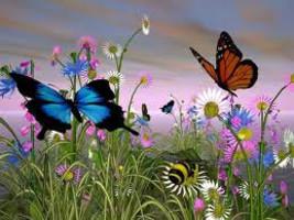 Butterfly Kisses - Home Fragrance Oil - Warmer ... - $6.00