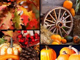 Autumn Spice - Home Fragrance Oil - Warmer / Bu... - $6.00