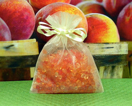 Georgia Peach Aroma Bead Sachets (Set of 2)  GR... - $6.00