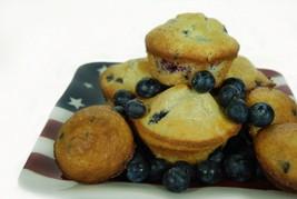 Blueberry Muffin-Home Fragrance Oil-Warmer / Bu... - $6.00