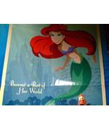 Disney California Adventure Poster Big Size - $14.95