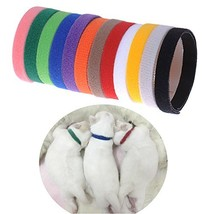 OCSOSO Pack of 12 Pet Dog Whelping Puppy Kitten ID Identify Sticker Coll... - $9.71