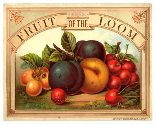 Fruit of the Loom advertising print trade card beautiful color ephemera