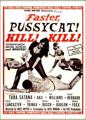 Faster  pussycat magnet 2.5 x 3.5