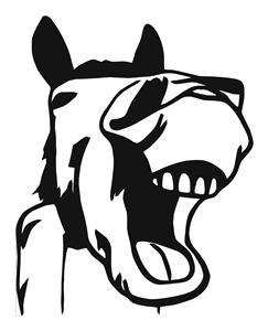 LAUGHING HORSE HEAD 10X8 DECAL ,  WINDOW ,TRUCK, ECT.
