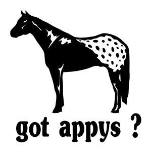 "APPALOOSA ""GOT APPYS ?"", HORSES DECAL.WINDOW DECAL"