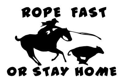 COWGIRL ROPER  ROPE FAST  HORSE DECAL  RODEO 7.5X12 in