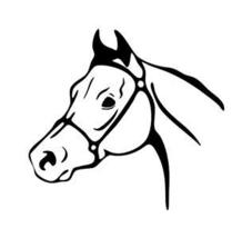 ARABIAN HEAD HORSE DECAL 10x11 in VINYL GRAPHIC - $10.50