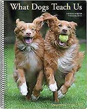 "Willow Creek What Dogs Teach Us 2020 Engagement Calendar 6.5""X8.5"" W - $16.99"