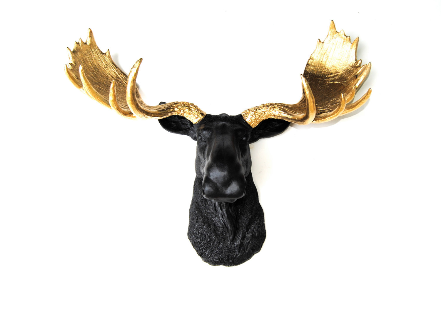 Black Moose Head With Metallic Gold Antlers  - Faux Taxidermy Moose M1708