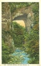 Natural Bridge, VA, 1920s unused Postcard  - $3.99