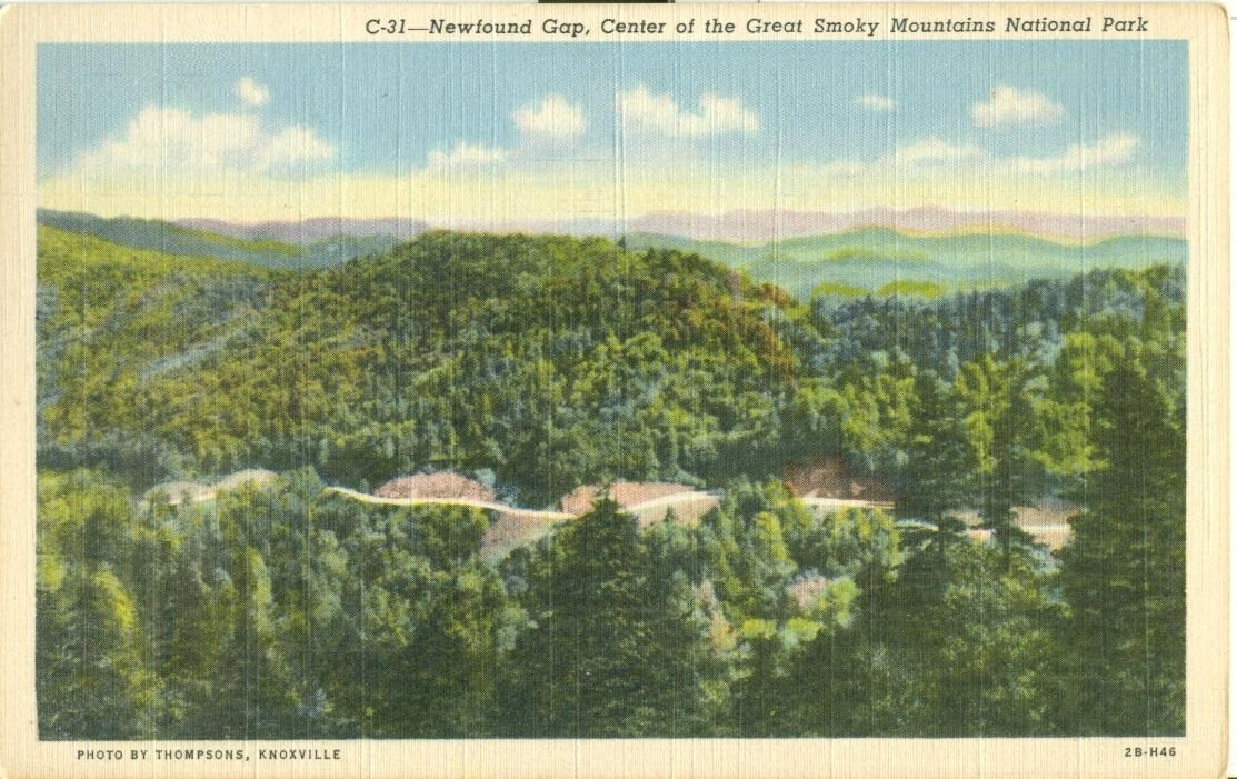 Newfound Gap, Center of the Great Smoky Mountains National park, unused Postcard