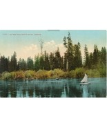 On the Willamette River, Oregon, early 1900s unused Postcard  - $5.99