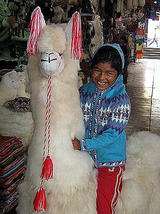 Hooded Cardigan,Alpaca Wool, hooded jacket  - $54.00