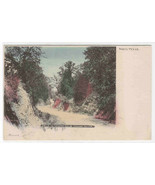 Drive to Country Club Lindsey Hollow Waco Texas 1907c hand colored postcard - $5.89
