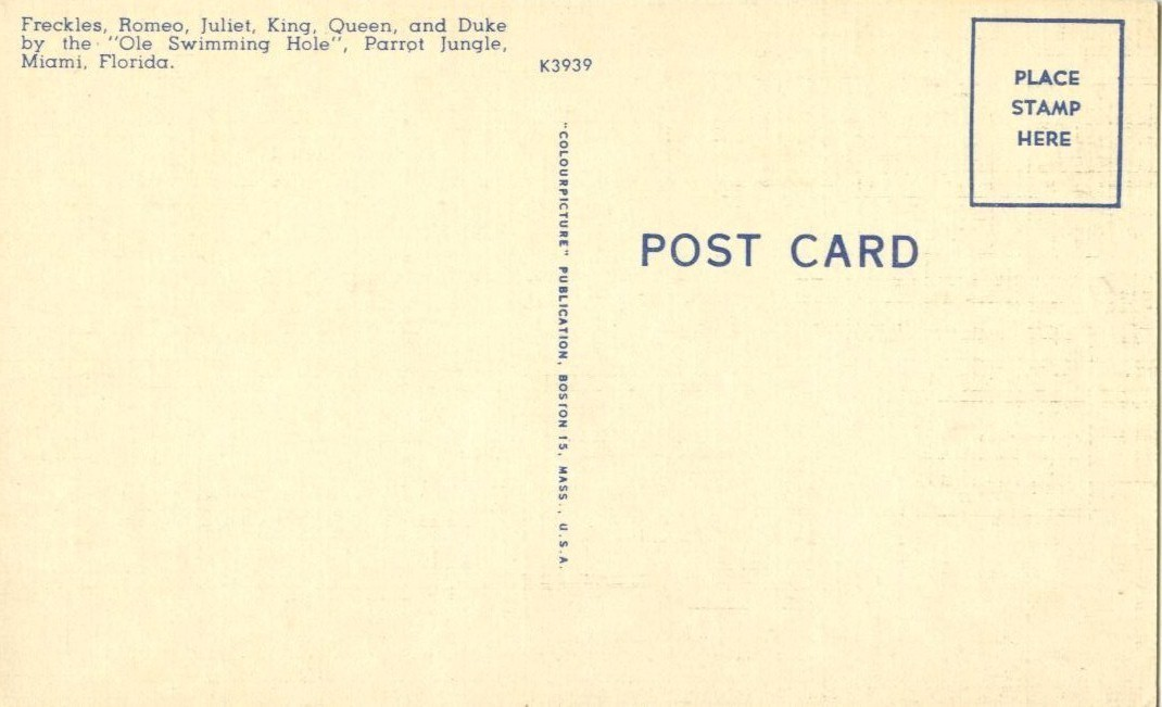Parrot Jungle, Miami, Florida,  unused linen Postcard