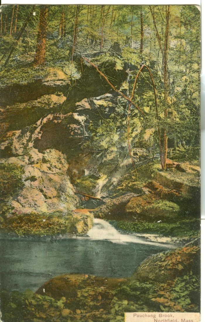 Pauchang Brook, Northfield, Mass, early 1900s used Postcard
