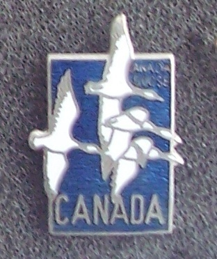 Old Canada Postage Stamp Geese Cloisonne Lapel Pin Pinback