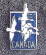 Gannets1 thumb200