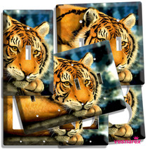 WILD SIBERIAN TIGER BLACK STRIPE LIGHT SWITCH OUTLET WALL PLATE COVER RO... - $7.99+