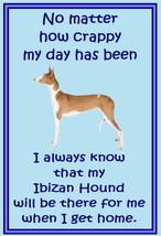 Ibizan Hound - Novelty dog fridge magnets - No ... - $4.50