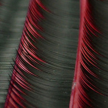 12mm x0.15 MINK EYELASH EXTENSION C Curl in retail box - $9.89