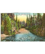 Rogue River, Oregon, early1900s unused Postcard  - $5.99