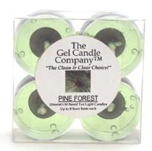 Scotch Pine Scented Gel Candle Tea Lights - 4 pk. - €3,86 EUR