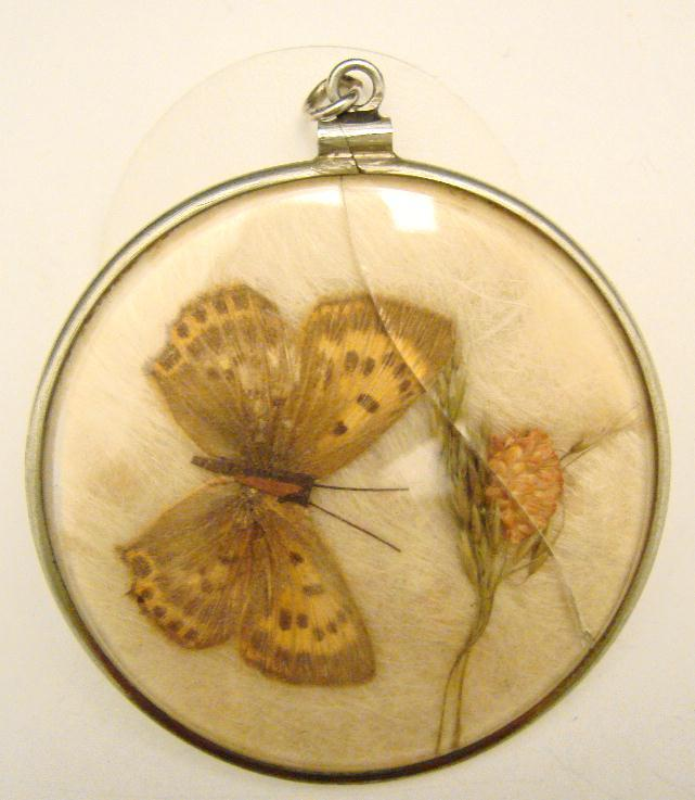 ANTIQUE BUTTERFLY DISC