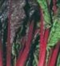 Swiss Chard - Ruby Red - Non-Hybrid - Non-GMO - St. Clare Heirloom Seeds - $1.99