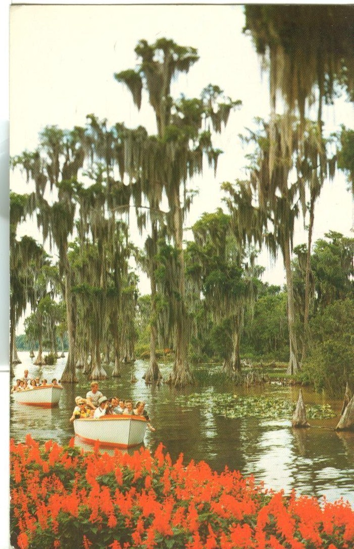 Sightseeing Boats glide through a wonderland of tropical beauty, Cypress Gardens