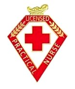 LPN Pin Licensed Practical Nurse Red Cross Lamp of Knowledge Graduation 103 New - ₹928.12 INR