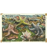 Star Fish Beds and Marine Gardens, Oregon Coast Highway, unused linen Po... - $3.99