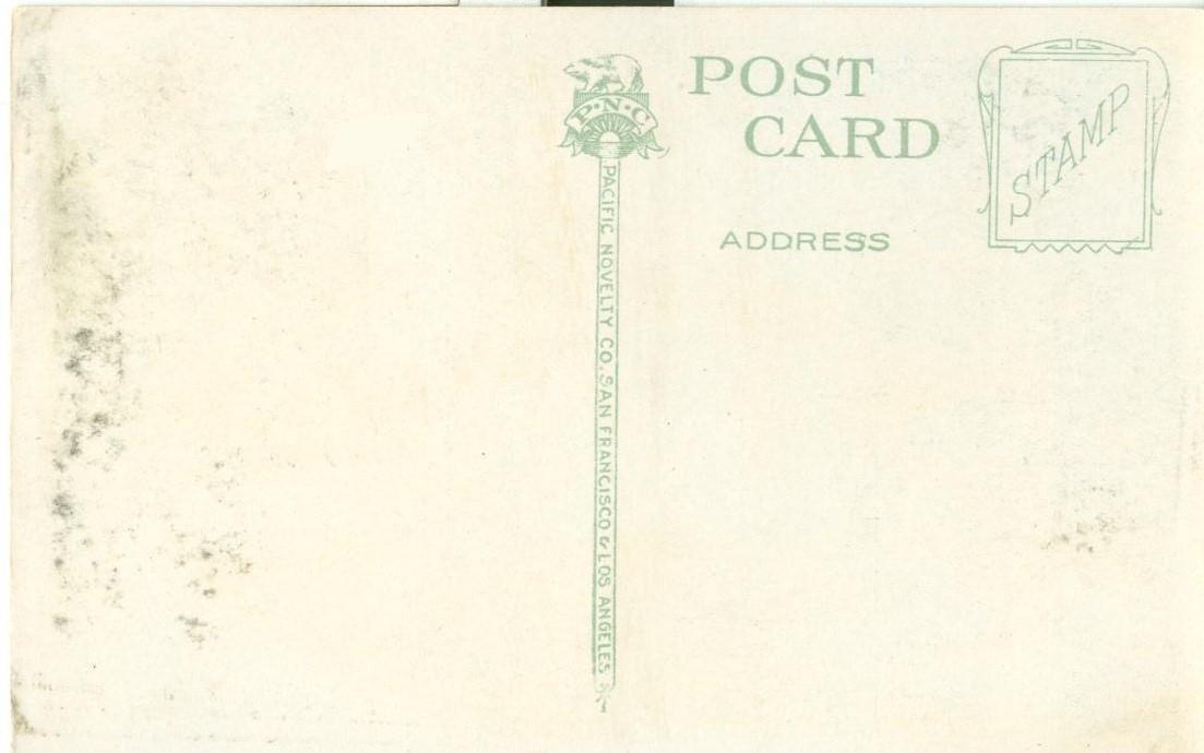 Suburban Neighborhood, California, early 1900s unused Postcard