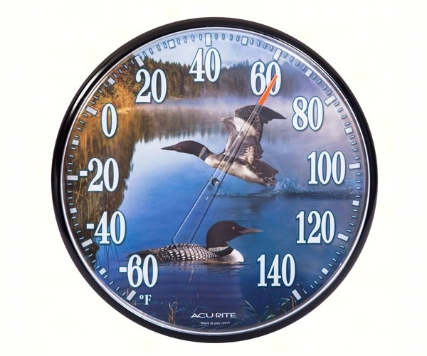 Thermometer loons  accurite01726