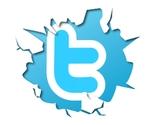 Twitter thumb155 crop