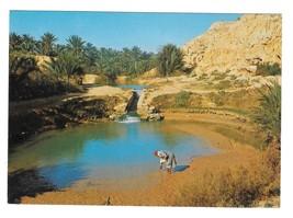 unisia Gabes The Oasis Societe Carthage Vintage 4X6 Postcard - $4.99